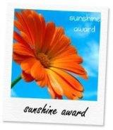 Blog Award :)